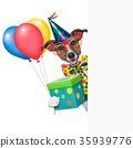 birthday dog 35939776