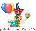 birthday dog 35939777