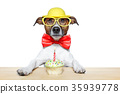 birthday dog cupcake 35939778