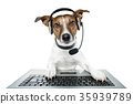 dog computer pc tablet 35939789