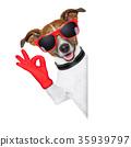 ok fingers dog 35939797