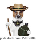 hike compass hat dog 35939804