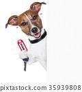 home dog owner 35939808
