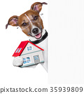 banner dog home and key 35939809