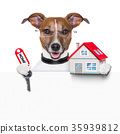 banner dog home and key 35939812