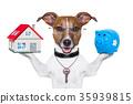 banner dog 35939815
