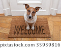 dog welcome home 35939816