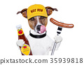 fast food hungry dog 35939818