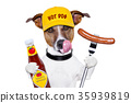 fast food hungry dog 35939819