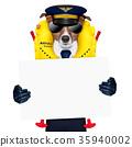 pilot dog 35940002