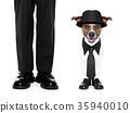tuxedo dog and owner 35940010
