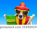 mexican dog 35940020