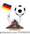 soccer dog 35940049