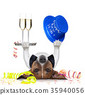 new years eve dog 35940056