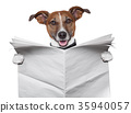 advertisement, animal, background 35940057