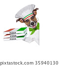 chef, jack, russell 35940130