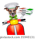 pizza delivery dog 35940131