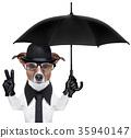 british dog  banner 35940147