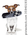dog slipper mouth 35940193
