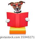 school learing dog 35940271