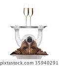 happy new year dog 35940291