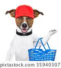 shopping dog 35940307
