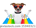 shopping dog 35940321