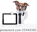 business dog 35940365