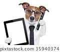 business dog 35940374
