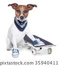 skateboard dog 35940411