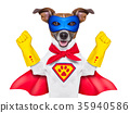 super hero dog 35940586