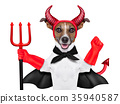 devil dog 35940587