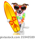 surfer dog 35940589