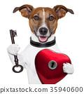 valentine dog  , unlock my heart 35940600