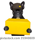 delivery post dog 35940609