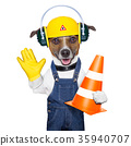 under construction dog 35940707