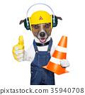 under construction dog 35940708