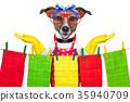 housewife dog 35940709