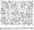 Hand Drawn of Fresh Peanuts Plants Background 35942706