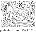 Podded Vegetables on A White Background 35942715