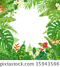 vector frame palm 35943566