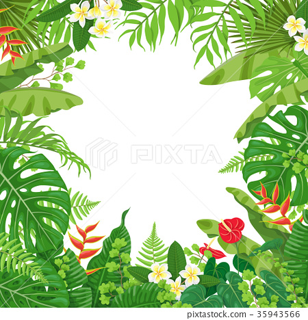 Colorful Background with Tropical Plants 35943566