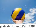 volleyball 35963981
