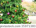 【카나가와 현】 크리스마스 트리 35971383