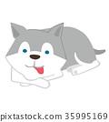 毛孩 狗 狗狗 35995169