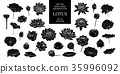 Set of isolated silhouette lotus in 32 styles. 35996092