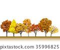 수목, 나무, 낙엽 35996825