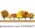 수목, 나무, 낙엽 35996827