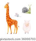 長頸鹿 蝸牛 鼠標 36000703