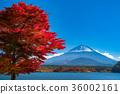 富士山 36002161